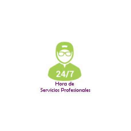 Serviço de Suporte Profissional ao seu sistema de automação residencial através de assistência remota