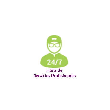 Servicio de Soporte Profesional a su sistema de domótica mediante asistencia remota