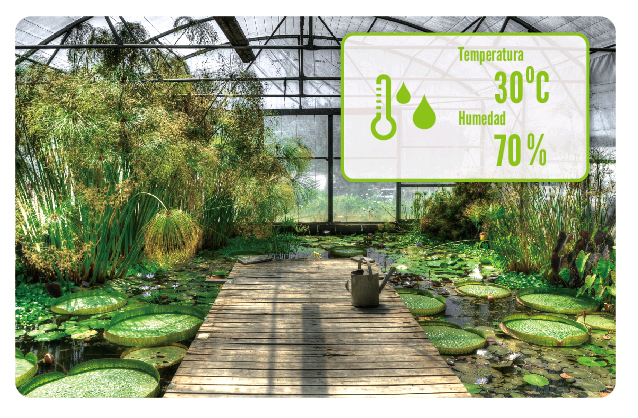 smartcube300w-vivero.jpg